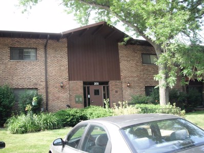 200 willow Lane UNIT 209, Willow Springs, IL 60480 - MLS#: 09996064