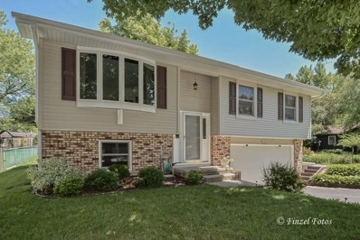 1210 Pine Street, Lake In The Hills, IL 60156 - #: 09996392