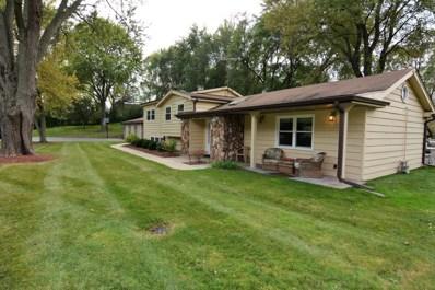 25216 River Road, Lake Barrington, IL 60010 - MLS#: 09996751