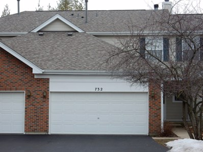 732 Timothy Court, East Dundee, IL 60118 - MLS#: 09997406