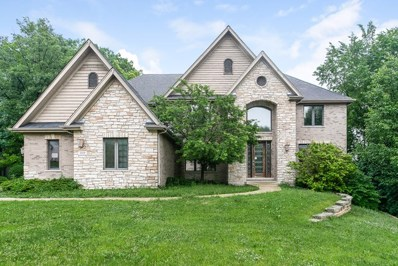 9009 Reserve Drive, Willow Springs, IL 60480 - MLS#: 09997763