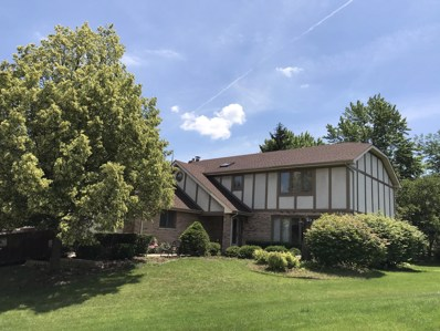 13819 S Creekside Court, Homer Glen, IL 60491 - MLS#: 09997795