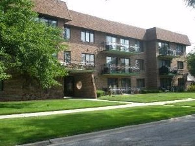 9535 Mayfield Avenue UNIT 205, Oak Lawn, IL 60453 - MLS#: 09997886