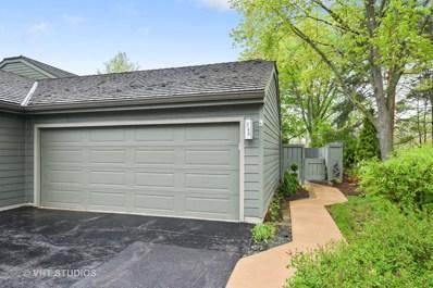 248 Timber Ridge Lane UNIT 387, Lake Barrington, IL 60010 - MLS#: 09998504