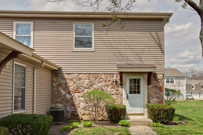 223 Winfield Court, Vernon Hills, IL 60061 - MLS#: 09999047