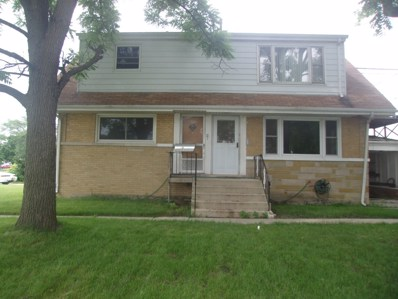 717 Chicago Road, Chicago Heights, IL 60411 - #: 09999056