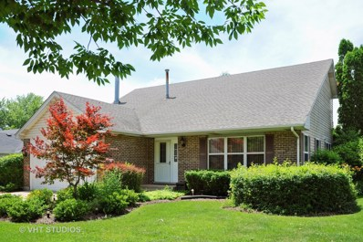 4006 New Haven Avenue, Arlington Heights, IL 60004 - MLS#: 09999203