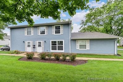 1601 Woodcutter Lane UNIT C, Wheaton, IL 60189 - #: 09999240
