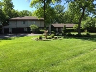 101 Timber Trail Drive, Oak Brook, IL 60523 - #: 09999452
