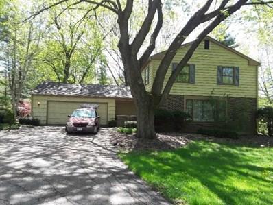 9 Walnut Lane, South Barrington, IL 60010 - MLS#: 09999723