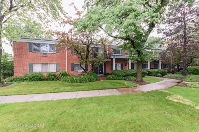 706 E Algonquin Road UNIT 203, Arlington Heights, IL 60005 - MLS#: 09999830