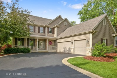 6 Shadow Creek Court, Lake In The Hills, IL 60156 - #: 09999871