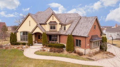 200 Wrenwood Circle, Elgin, IL 60124 - MLS#: 10000052