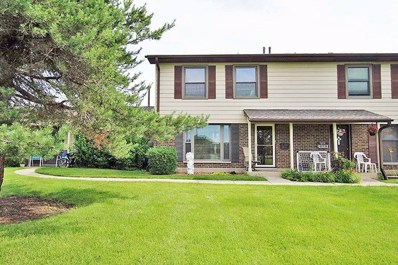813 Pahl Road UNIT 813, Elk Grove Village, IL 60007 - #: 10000066