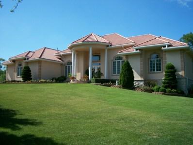 56 Romiga Lane, Palos Park, IL 60464 - #: 10000113