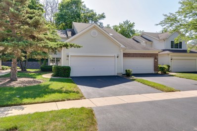 310 Spring Creek Circle, Schaumburg, IL 60173 - #: 10000551