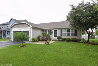 800 HACKBERRY Lane, Algonquin, IL 60102 - MLS#: 10000578