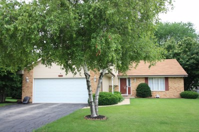 21030 S Ron Lee Drive, Shorewood, IL 60404 - MLS#: 10000642