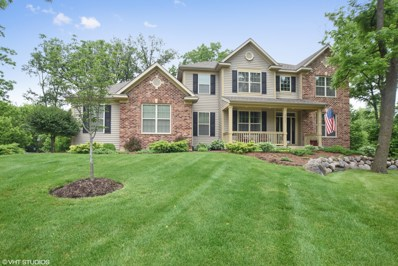 9637 Thousand Oaks Circle, Spring Grove, IL 60081 - #: 10001020