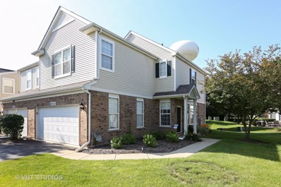 24312 Leski Lane, Plainfield, IL 60585 - MLS#: 10001525