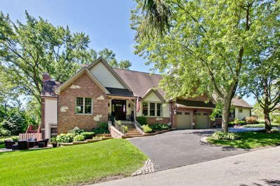 801 S Grove Avenue, Barrington, IL 60010 - MLS#: 10002242