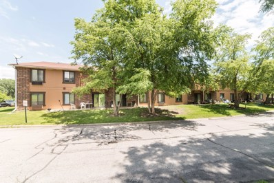 503-507  Dorchester Court, Roselle, IL 60172 - MLS#: 10002334
