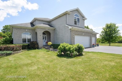 5008 Country Springs Drive, Johnsburg, IL 60051 - #: 10002970