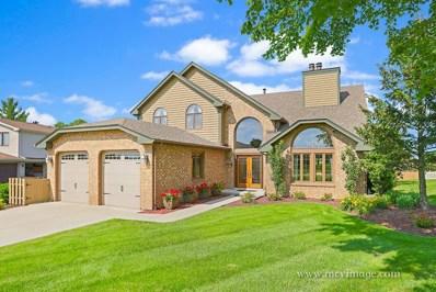 13250 W Oak Ridge Lane, Homer Glen, IL 60491 - MLS#: 10003037