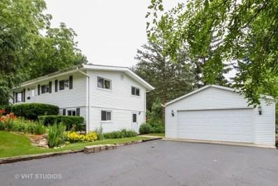 290 E Kimball Avenue, Woodstock, IL 60098 - #: 10003292