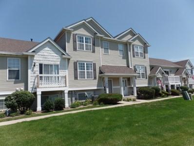 1619 Fieldstone Drive NORTH, Shorewood, IL 60404 - #: 10003351