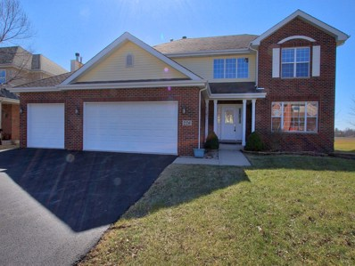 226 Poplar Lane, Beecher, IL 60401 - #: 10003654