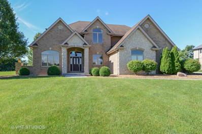 7027 W Gabreski Lane, Monee, IL 60449 - #: 10003889