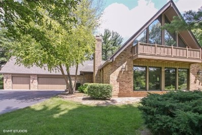10604 Shelley Court, Bull Valley, IL 60098 - #: 10003986