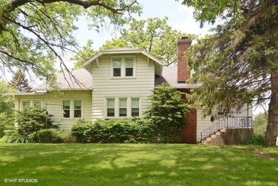 101 E Palatine Road, Prospect Heights, IL 60070 - #: 10004211