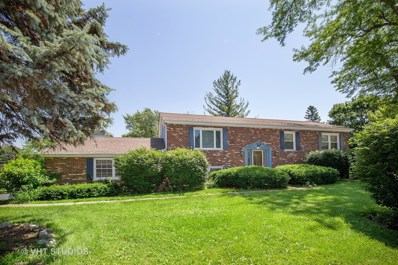 909 Dundee Avenue, Barrington, IL 60010 - MLS#: 10004214