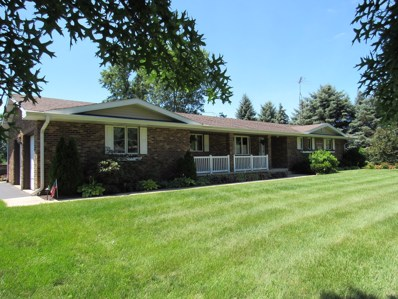1027 W Kennedy Road, Braidwood, IL 60408 - MLS#: 10004625