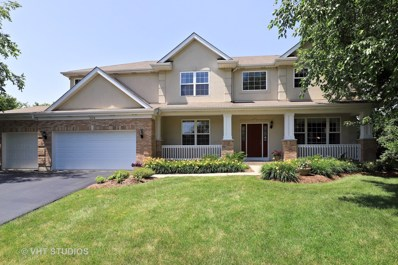 2228 Cathedral Court, Gurnee, IL 60031 - #: 10004696