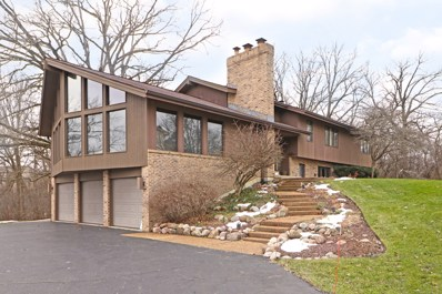 6 Princeton Lane, Hawthorn Woods, IL 60047 - #: 10004716