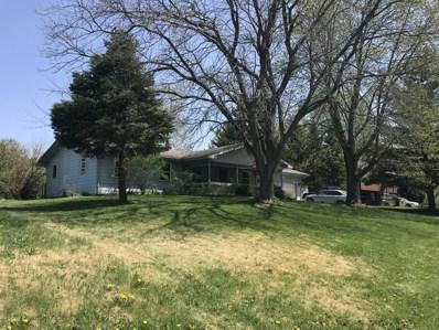 140 S Anderson Road, New Lenox, IL 60451 - MLS#: 10005147