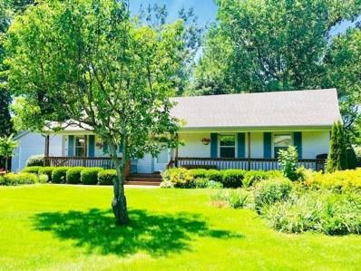 128 N Maple Street, Braidwood, IL 60408 - MLS#: 10005718