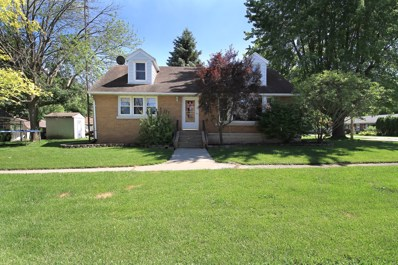 175 Lake Street, South Wilmington, IL 60474 - #: 10005734