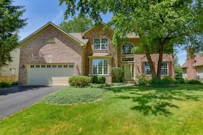 5071 SWITCH GRASS Lane, Naperville, IL 60564 - MLS#: 10006049