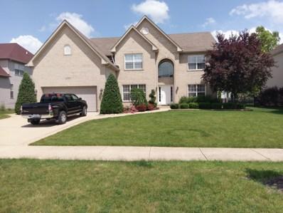 25903 Meadowland Circle, Plainfield, IL 60585 - #: 10006400