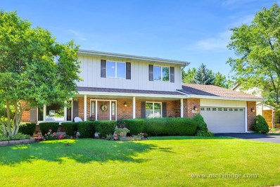 13326 W Creekside Drive, Homer Glen, IL 60491 - MLS#: 10006520