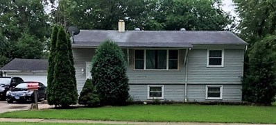 377 Tee Lane, Carpentersville, IL 60110 - MLS#: 10006837