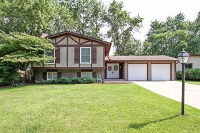 205 Wellington Drive, Crystal Lake, IL 60014 - #: 10006882
