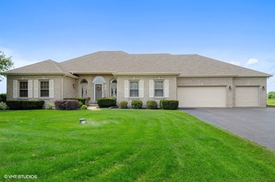 17431 S Honora Drive, Plainfield, IL 60586 - MLS#: 10006928