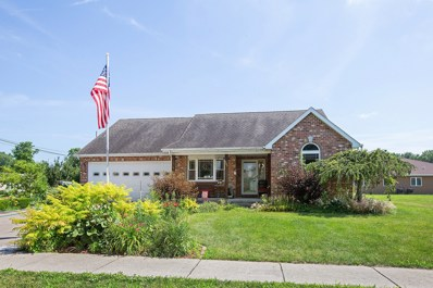 903 Madison Avenue, Braidwood, IL 60408 - #: 10007153