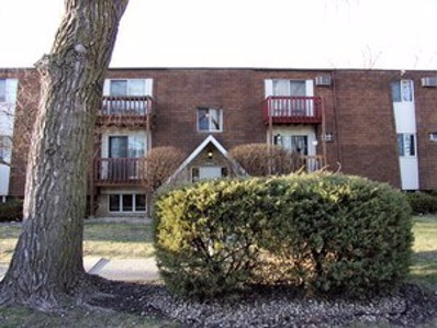 220 Madison Street UNIT 3A, Joliet, IL 60435 - MLS#: 10007163