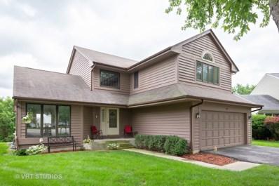 40 Hunter Drive, Montgomery, IL 60538 - MLS#: 10007505